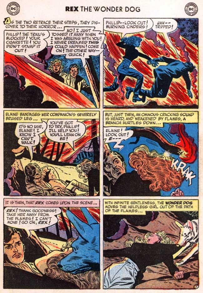 Rex salva una fanciulla da un incendio